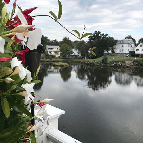 Mill Pond Norwalk CT