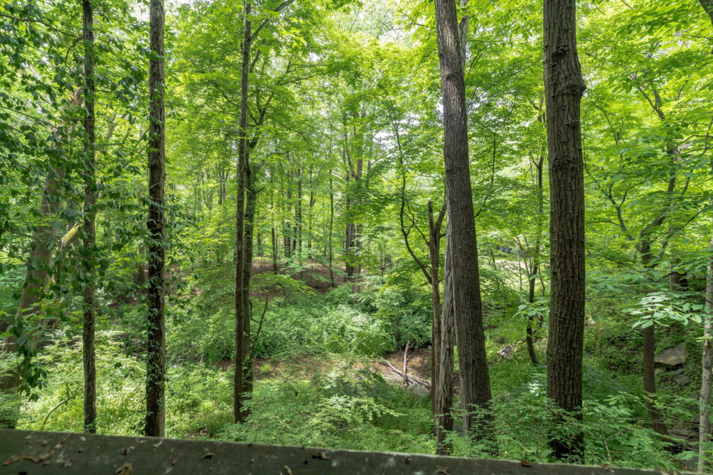 Exterior Grounds View - Surround scenic deck overlooking the private calm wooded back yard. The property is large enough to build barn/stable perfect for horse lovers. This house sits in the middle of the woods with wildlife galore.
